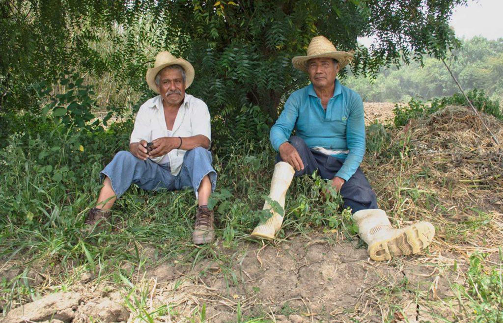 En casos como Oaxaca se ha logrado innovar con alternativas que siembran el agua de lluvia en las tierras y que ha recuperado sus pozos. (Ocotlán de Morelos, Oaxaca)